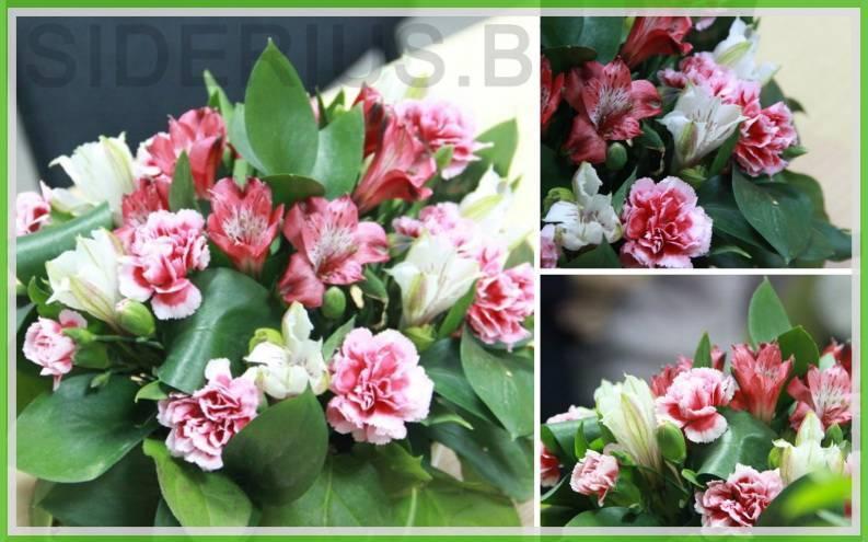 Обучение флористов в Минске